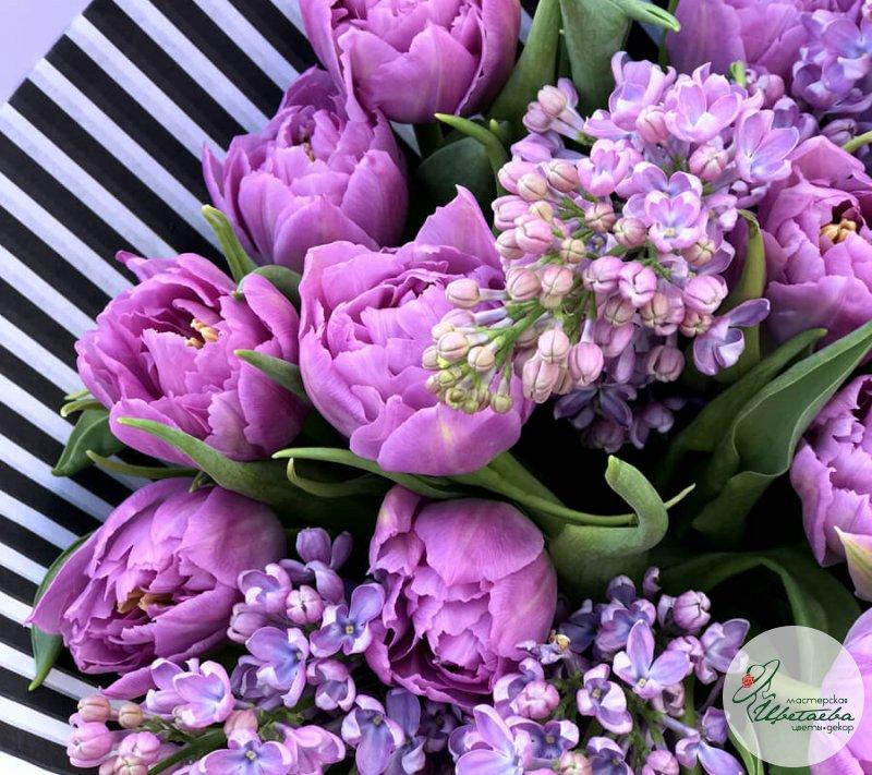 картинки сирени с тюльпанами происходит самой камере